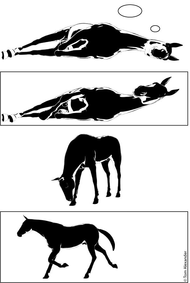 stalking-horse-pt3-2